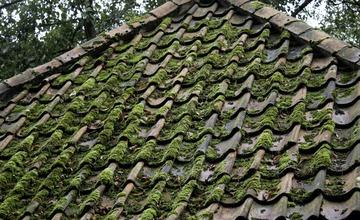 Nettoyage, démoussage et peinture des toitures à Lille